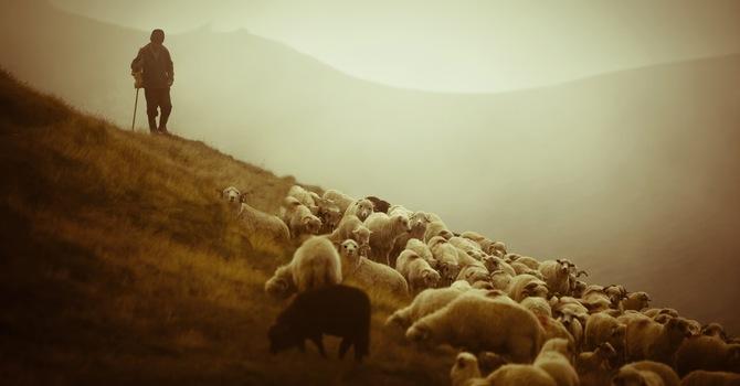 Five Helpful Steps of Evangelism image