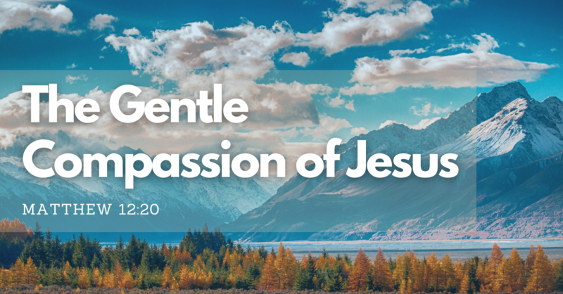 The Gentle Compassion of Jesus