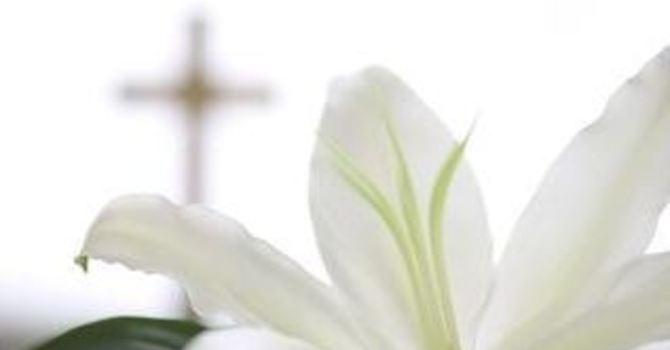 Order Easter Flowers! image