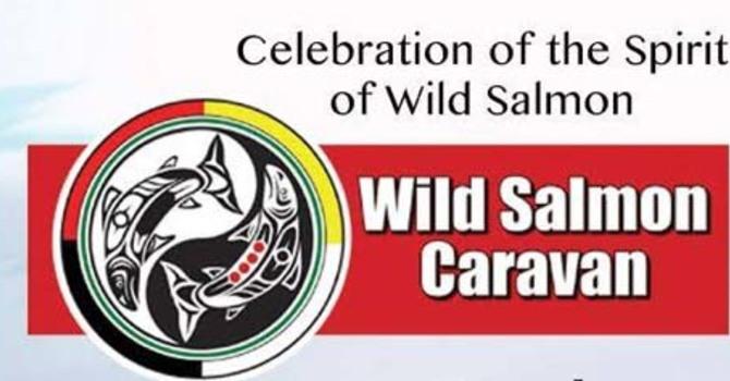 Support the 2016 Wild Salmon Caravan image