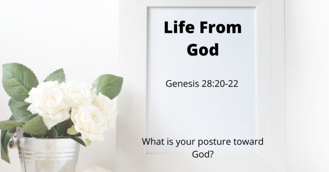 Life From God