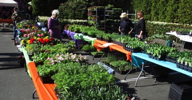 Shelbourne Kitchen Garden Sale was a Great Success! image
