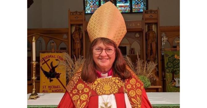 Lynn McNaughton elected metropolitan image