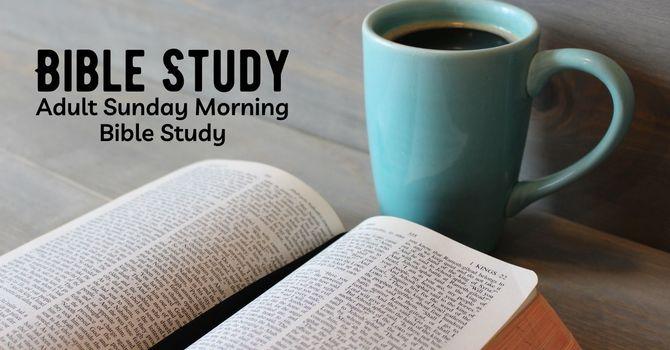 Luke Bible Study