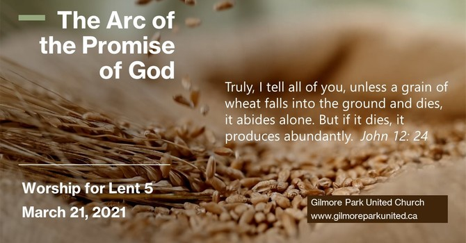 The Arc of the Promise of God image