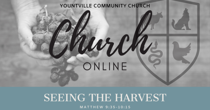 6. Seeing the Harvest