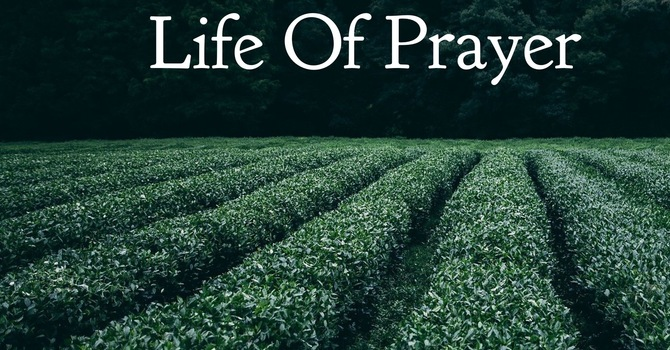 Cultivating A Life Of Prayer