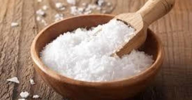 Salt: For the life of the world.