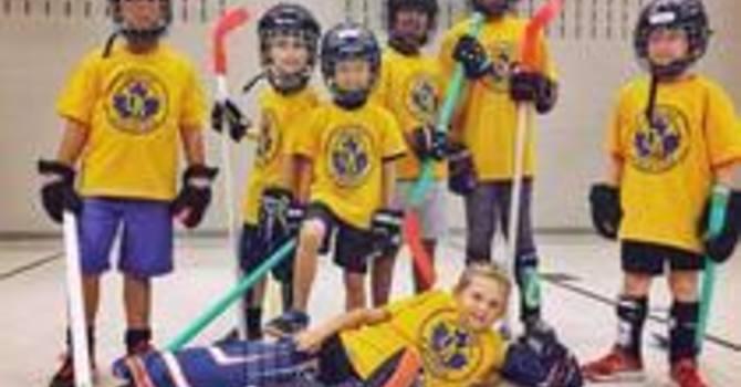 Onside Sports Camp - Ball Hockey (July 12-16)
