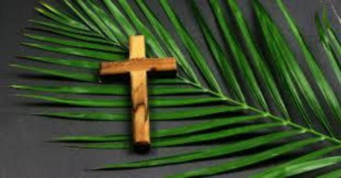 Palm & Passion Sunday image