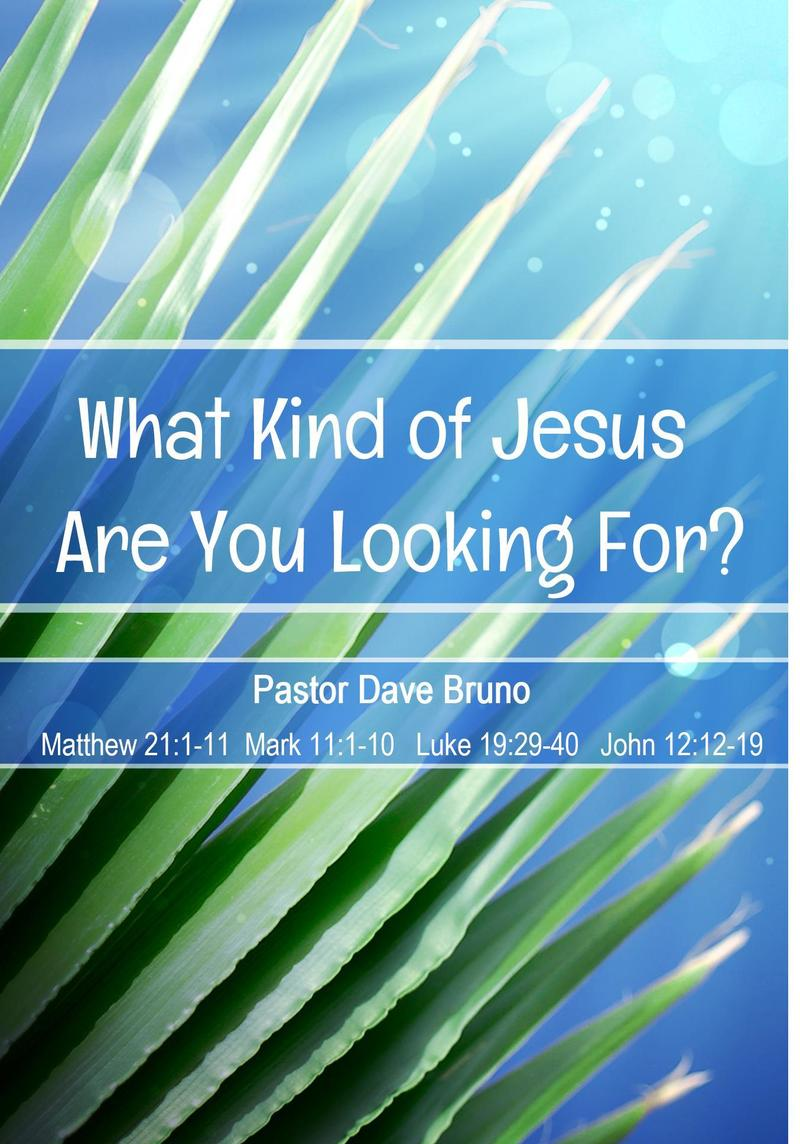 What Kind of Jesus Are You Looking For?