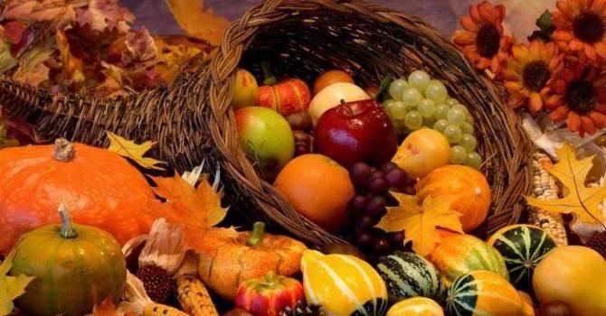 Thanksgiving Food Drive at St Matthias & St. Luke image