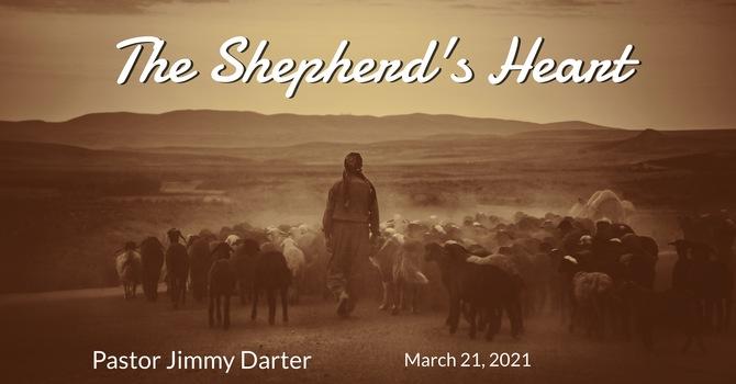 The Shepherd's Heart