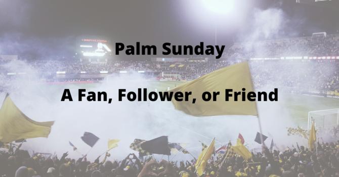 A Fan, Follower, or Friend