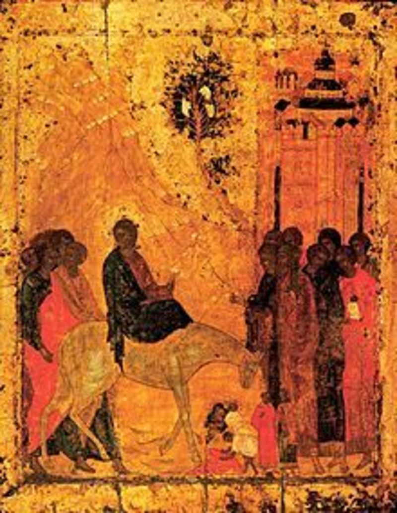 Palm Sunday - reflections on the passion