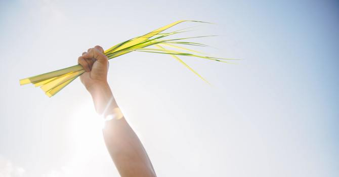 Palm Sunday - March 28, 2021 image