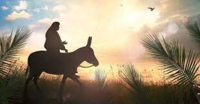 Why Jesus Wept On Palm Sunday