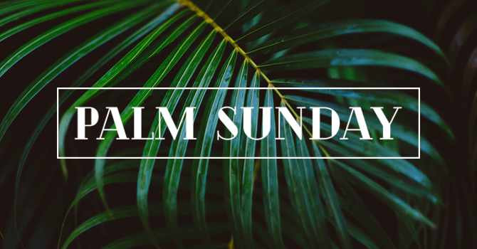 Reflection: Palm Sunday, March 28