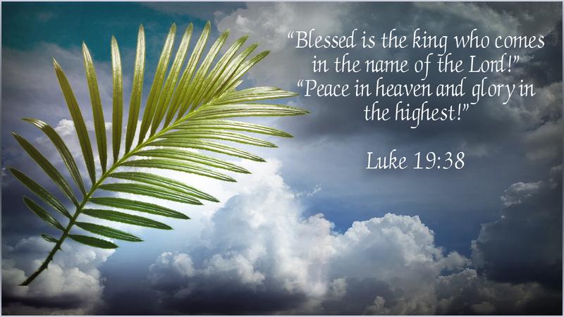 Tears on Palm Sunday