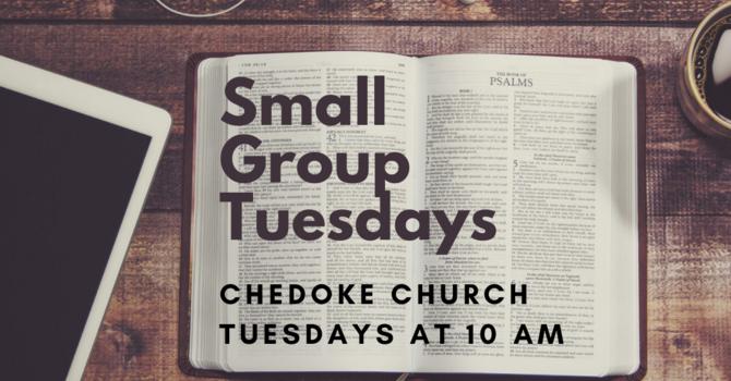 Small Group Tuesdays