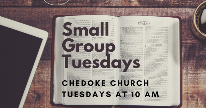 Small Group Tuesdays
