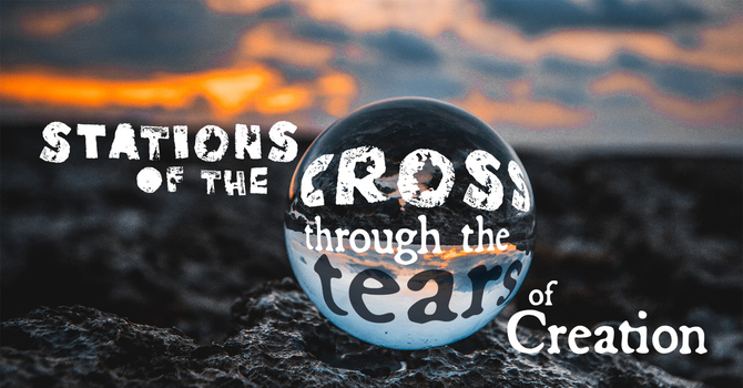 Stations of the Cross - Through the Tears of Creation image