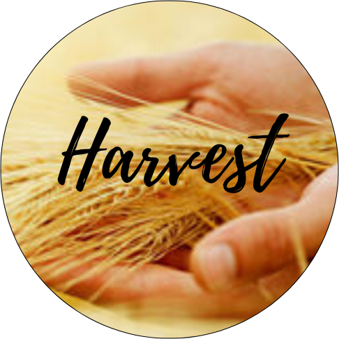 Harvest Christian Center