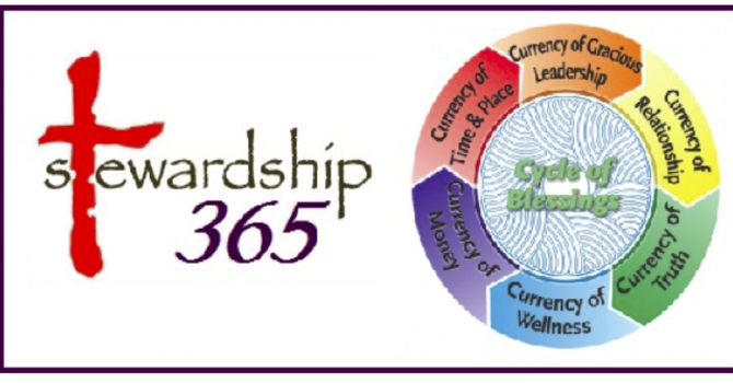 Stewardship 365 - What is it? image