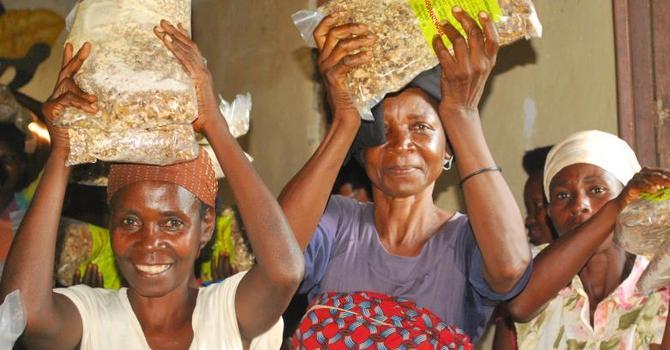 Burundi Report image