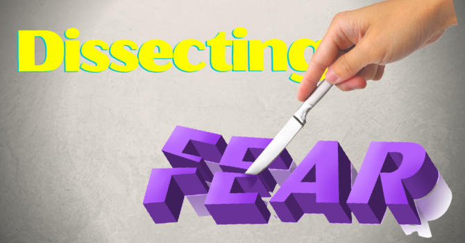 Dissecting Fear