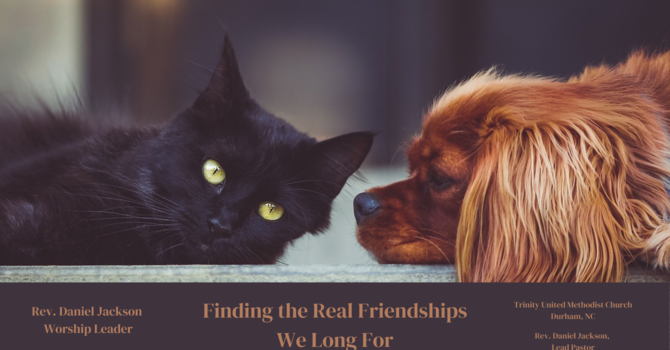 Finding the Real Friendships We Long For