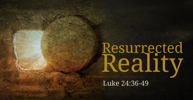 Resurrected Reality