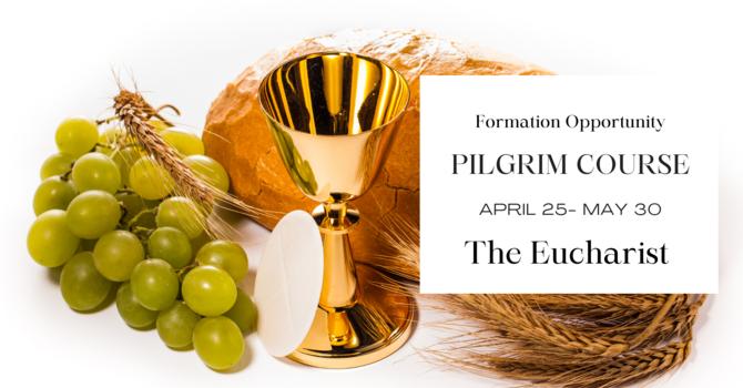 Pilgrim Course: The Eucharist