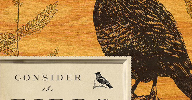 Consider The Birds: A Book Study hosted by St. Brigid's image