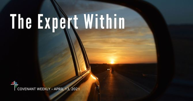 The Expert Within image