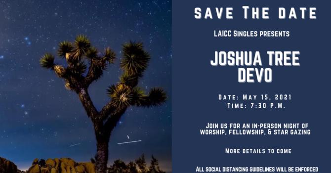 Joshua Tree Devo