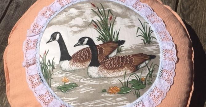 Decorative Duck pillows
