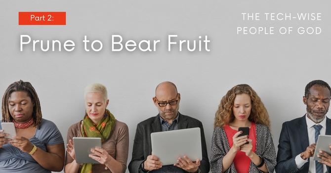 Prune to Bear Fruit