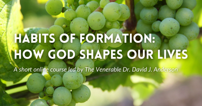 Habits of Formation: How God Shapes our Lives image