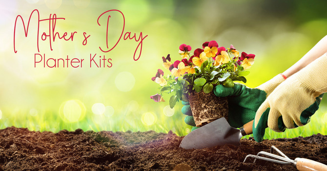 Mother's Day Planter Kits image