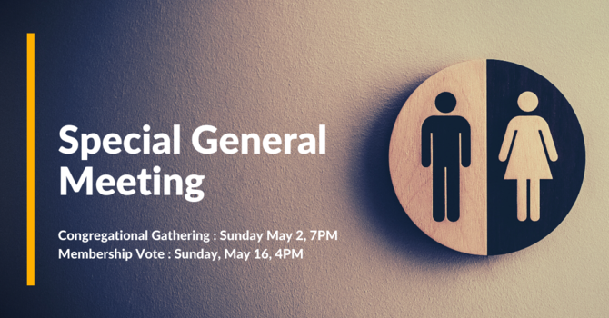 Special General Meetings: proposed bylaw amendment