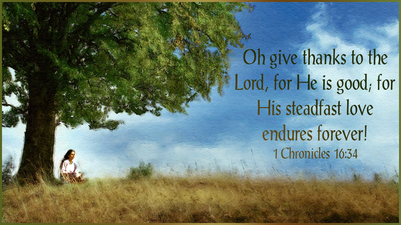 Abounding in Steadfast Love & Faithfulness