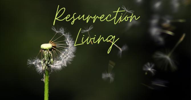 The Gospel: Transmission Received
