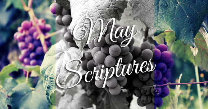 Scriptures for May image