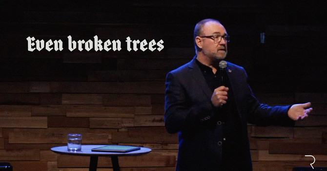 Even Broken Trees