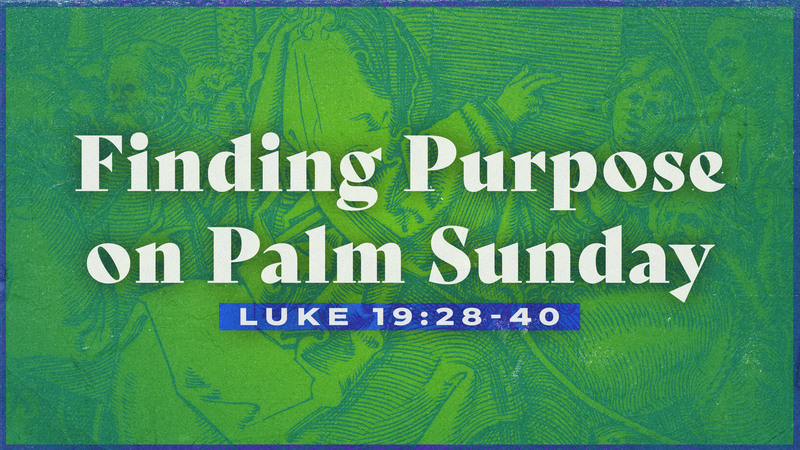 Finding Purpose on Palm Sunday
