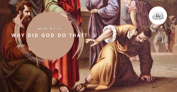 Why Did God Do That?