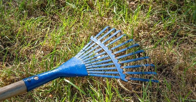 Strombeck Cemetery Cleanup