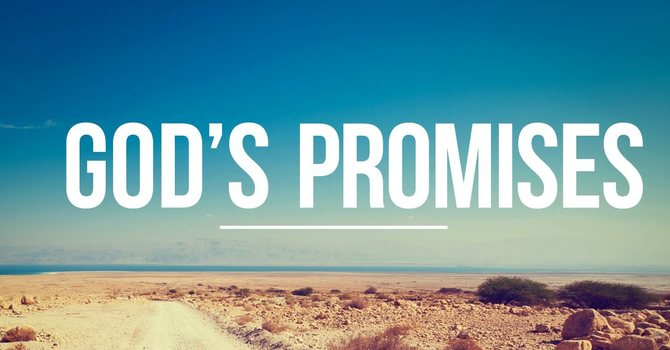 The Promise of a Savior
