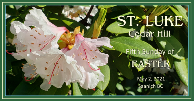 Video of the Livestream of Fifth Sunday of Easter Service Now Available image